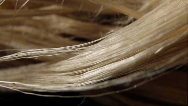 волокна кенафа