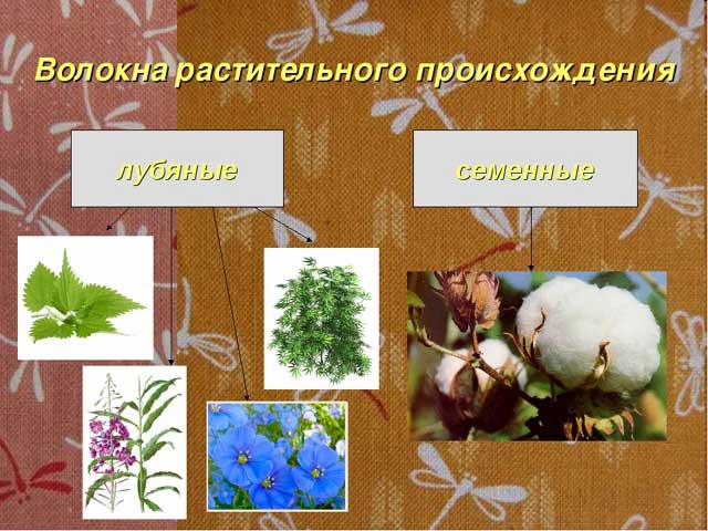 классификация растительных волокон