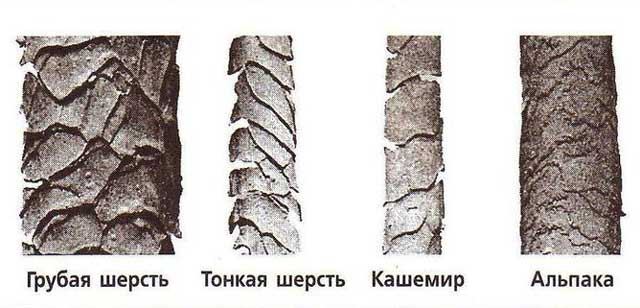 виды шерстяных волокон