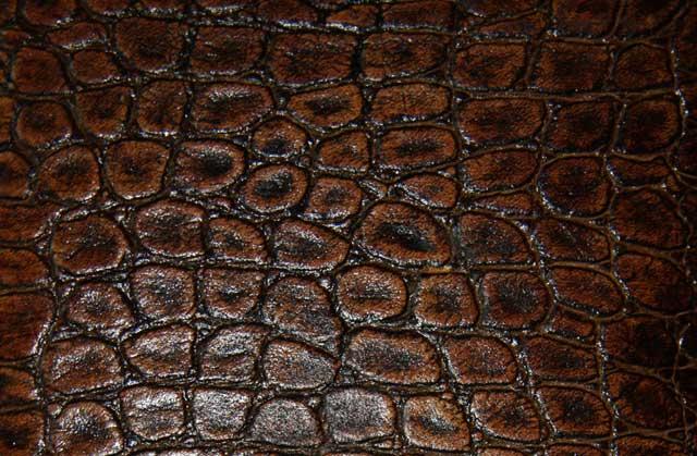 фактура кожи змеи