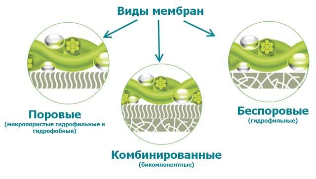 разновидности мембран